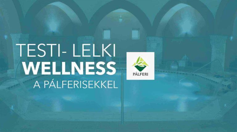 testi-lelki-wellness
